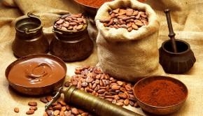Польза какао-бобов для организма